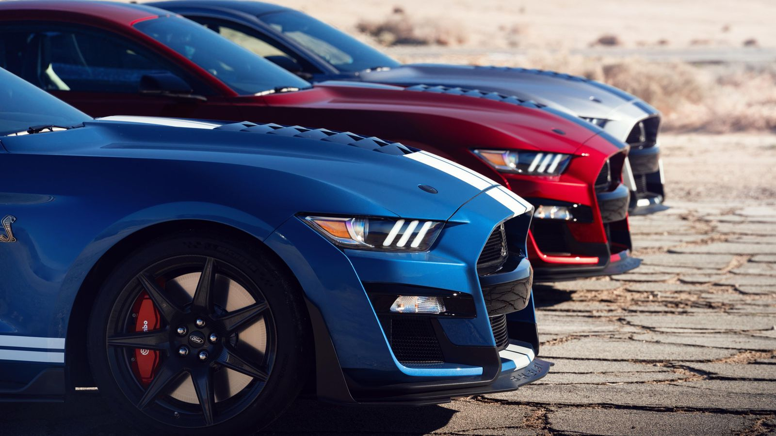 The 2020 Mustang Shelby was sold at an auction whose proceeds were donated to charity.