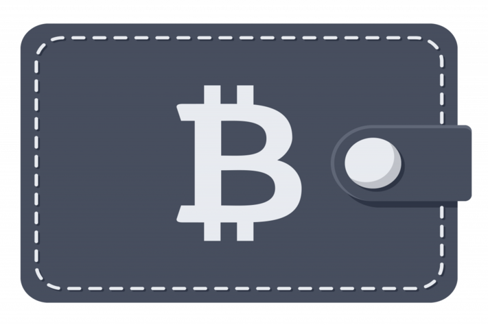 Bitcoin Wallet Payments