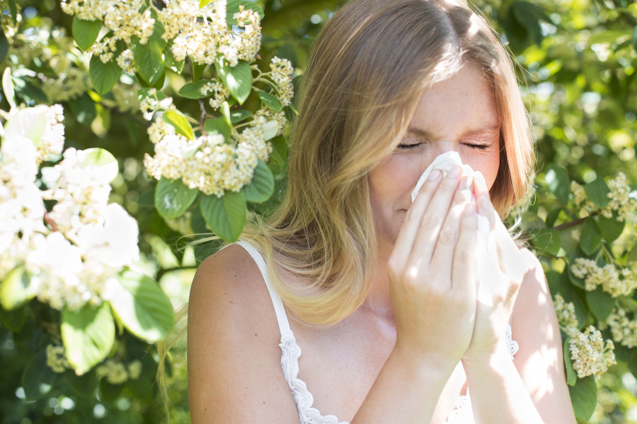 Pollen Count warning: Are you at risk?