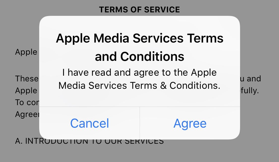 iPhone Terms and Conditions iOS Bug