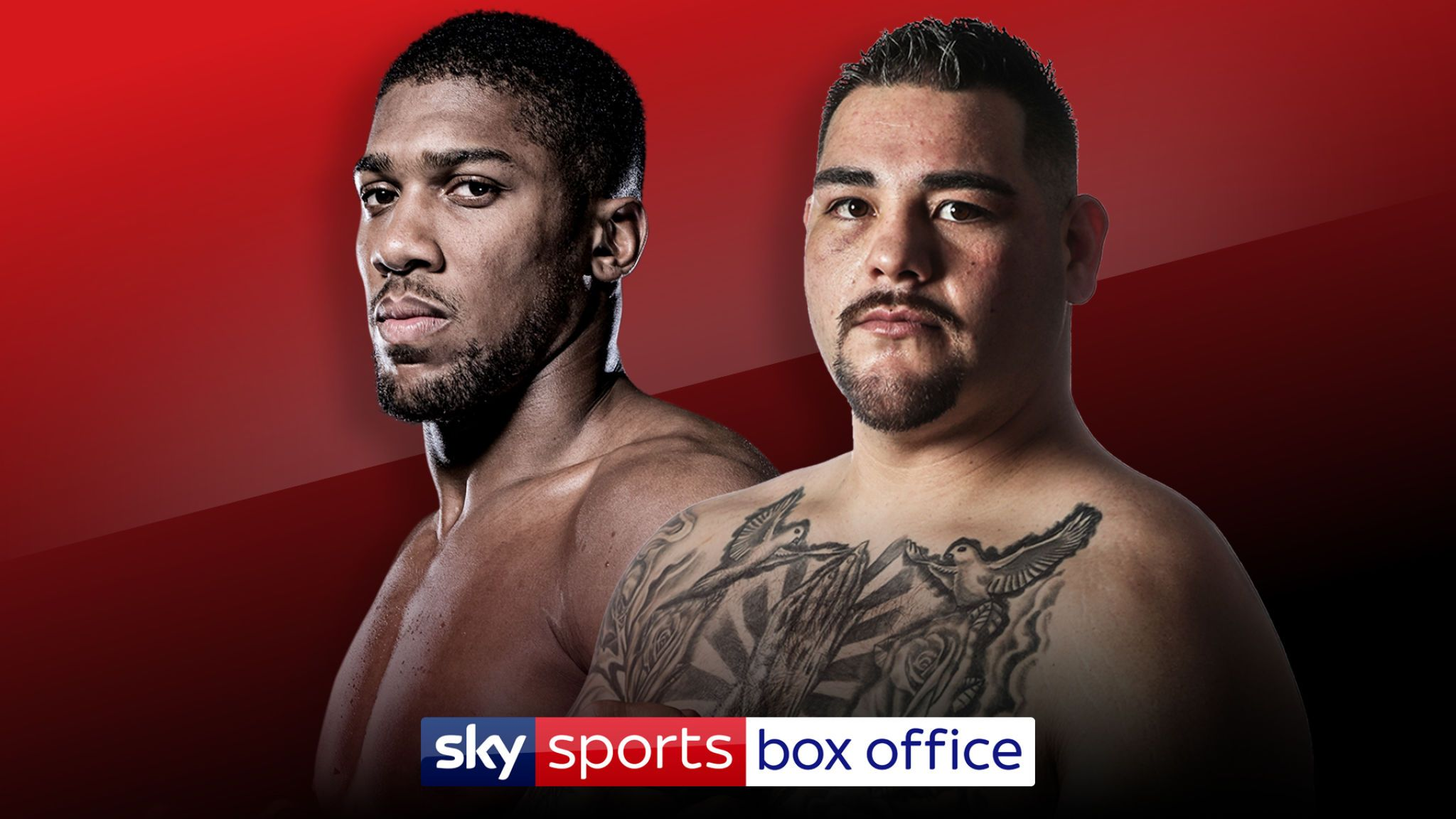 Anthony Joshua vs Andy Ruiz Jr
