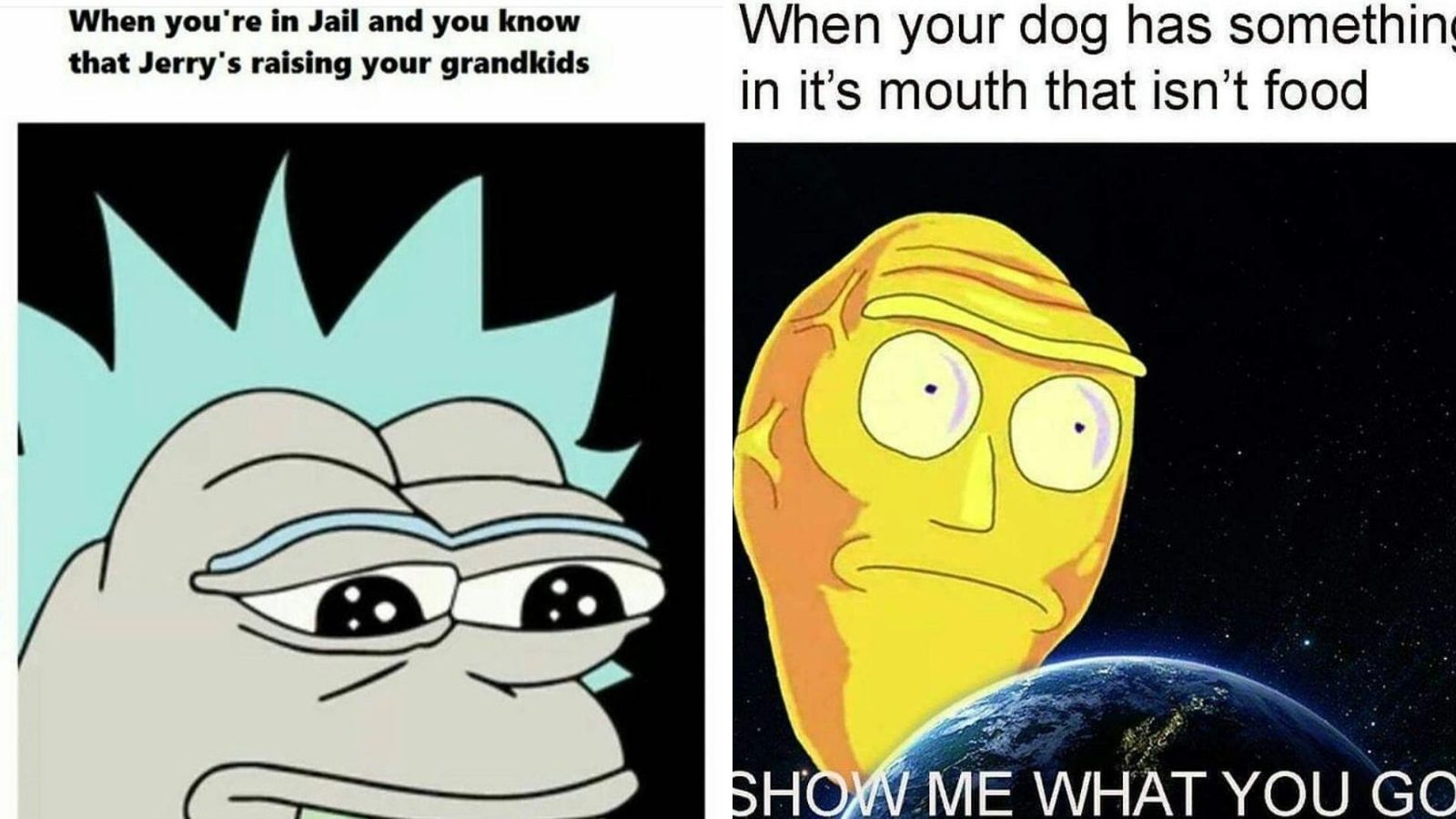 Best Rick and Morty season 4 release date memes