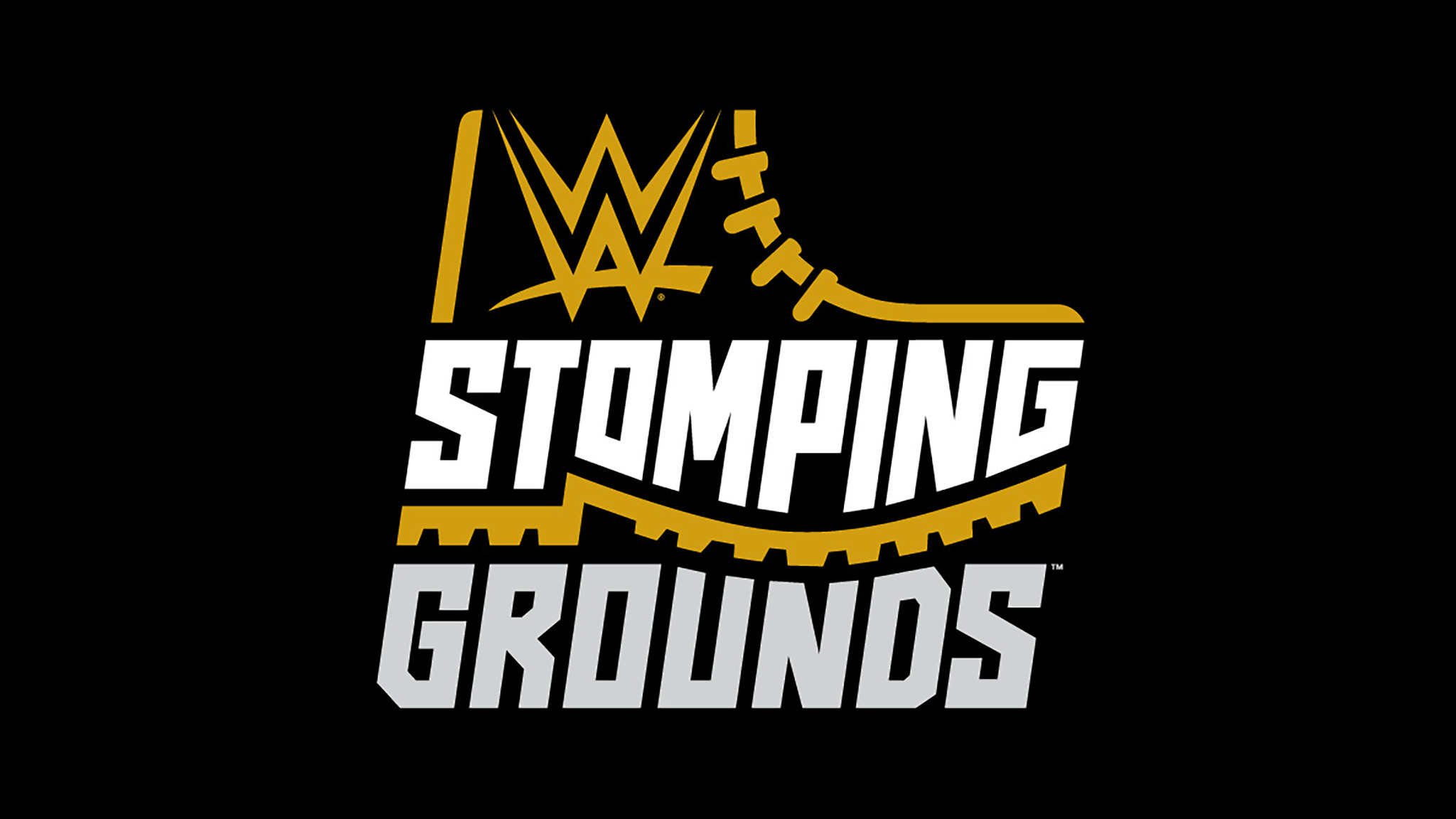 WWE Stomping Grounds Brock Lesnar Cash in his Money Bank