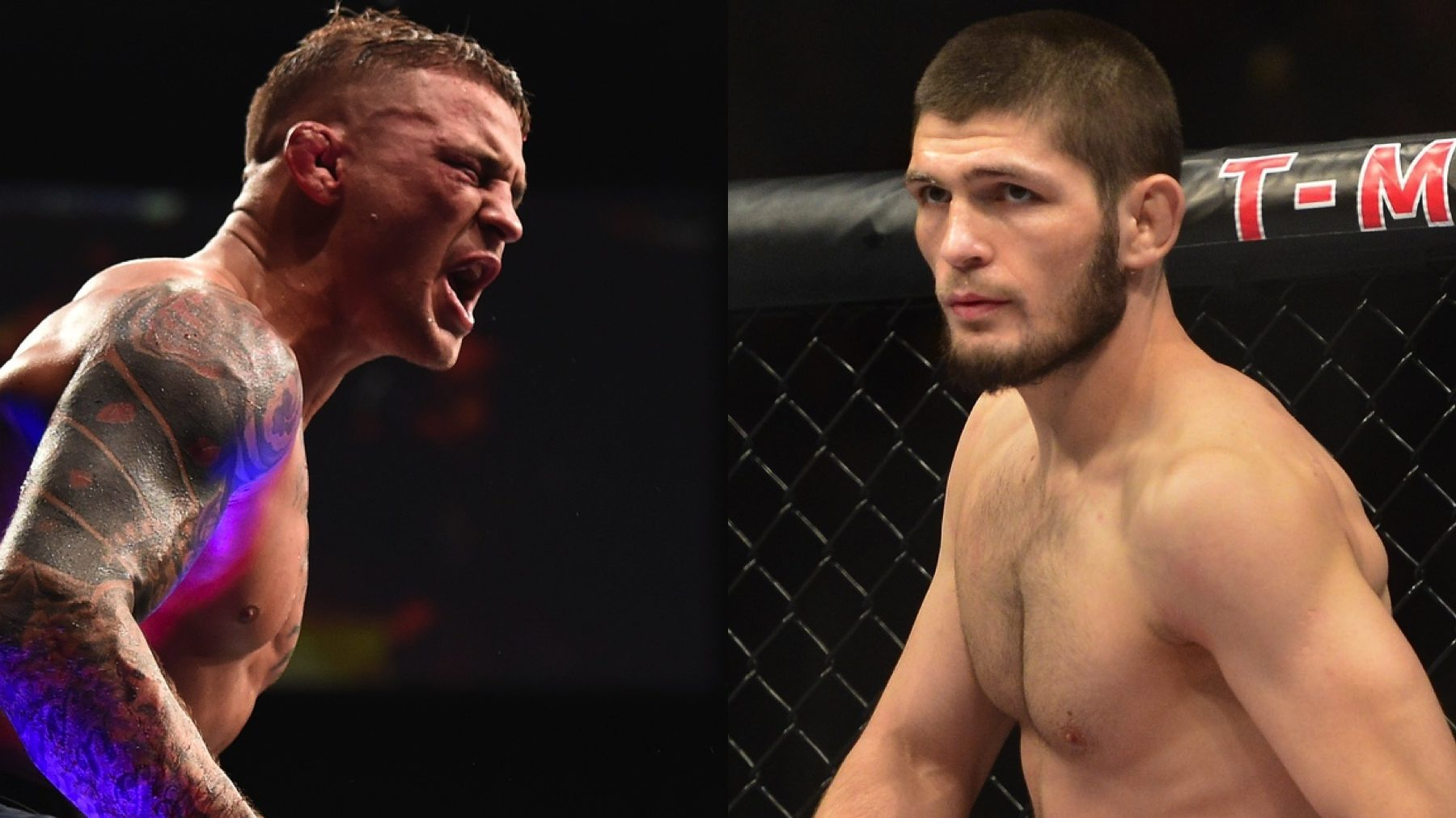 UFC 242 Khabib vs Poirier Preview Betting Odds