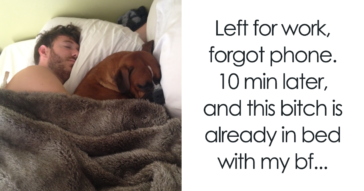 20+ Pets Who Are Not Even Sorry To Steal Their Owner's Partner