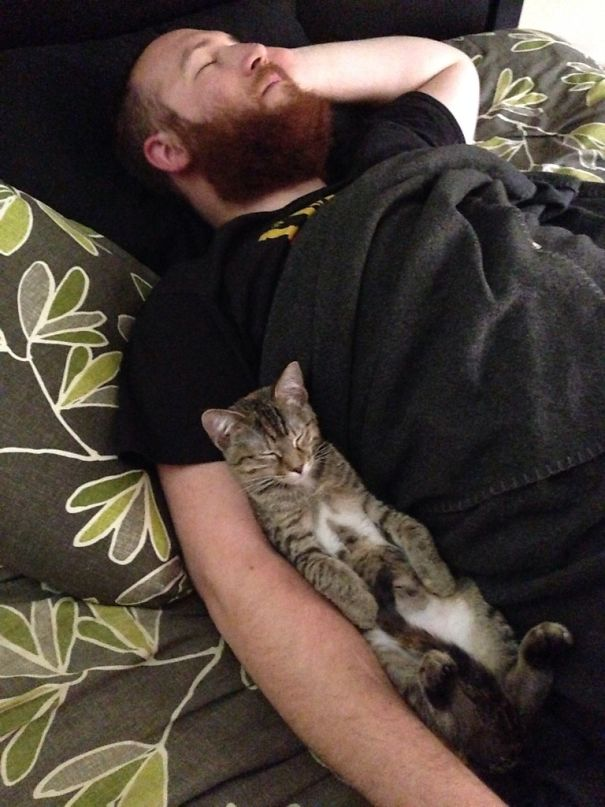 How the cat sleeps with her husband