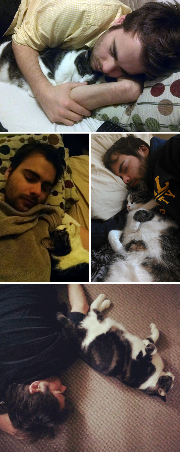 Pets with Owner's Partner: The cat always takes a nap with her husband