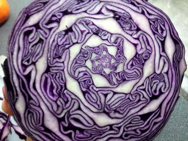 Chopped A Red Cabbage And Found This Pattern