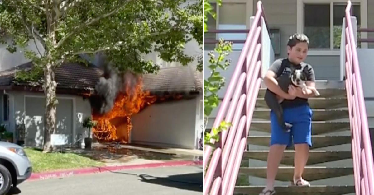 11-Year-Old Boy And His Dog Team Up To Save Neighbor's Home From Devastating Fire