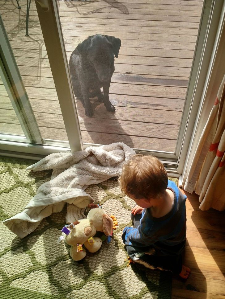 My son is busy feeding his toy dog while our real dog is sitting outside.