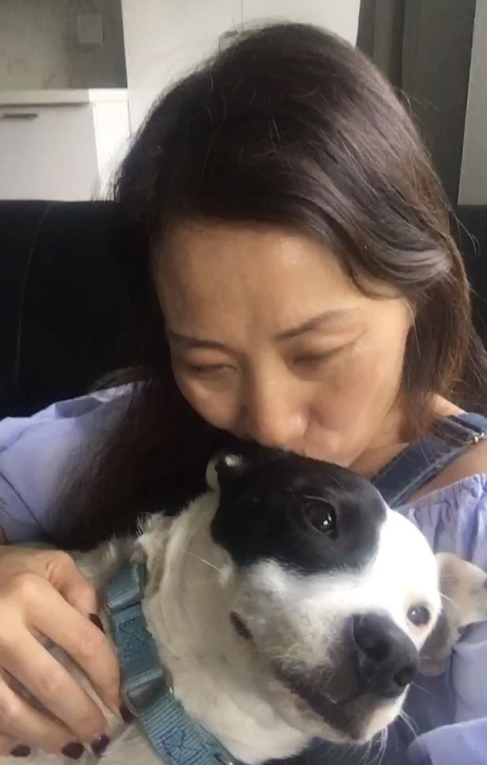 mom love to his dog