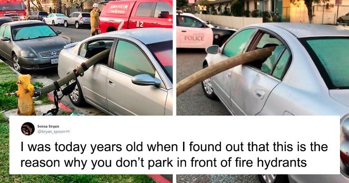 30 People Who Didn't Realize These Random Things Until Today