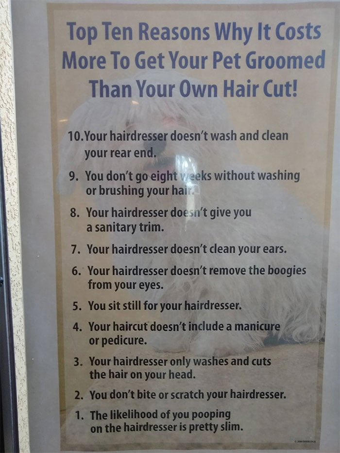 So, here it is! The list that every person needs to see before taking their pet to a groomer!