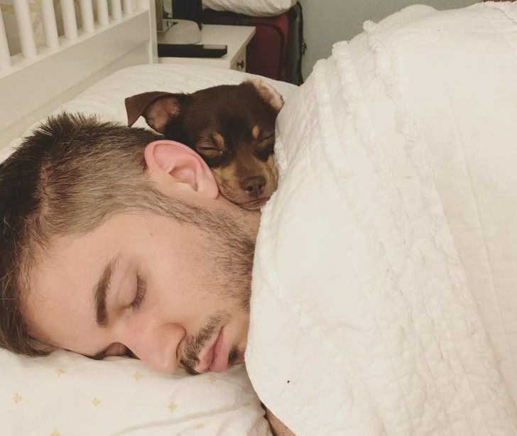Woke up to find my boyfriend and our dog sound asleep like this