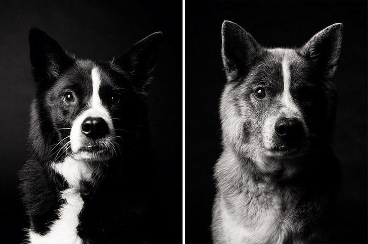 Maddy — 5 years and 10 years
