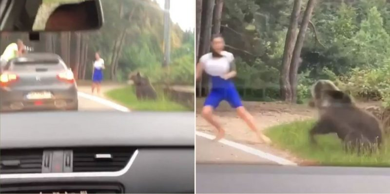 Wild bear lunges at a woman in Romania