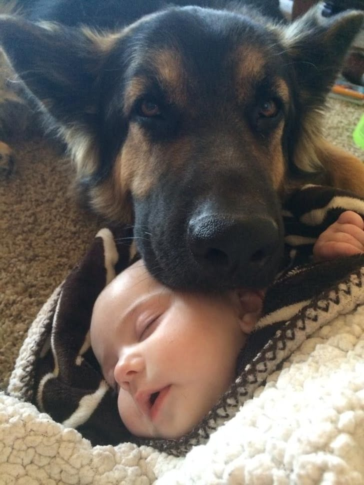 He's guarding the baby
