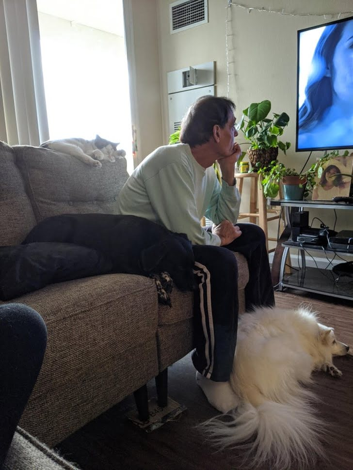 Just another dad surrounded by the pets he never wanted