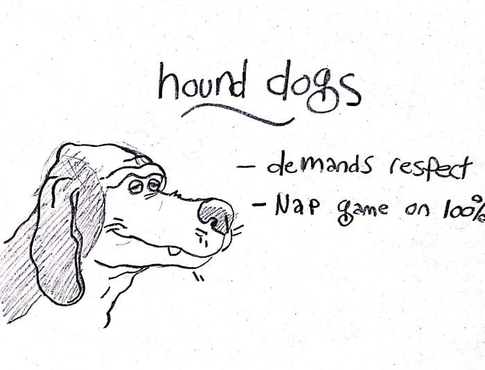 If you see a hound, they are probably napping