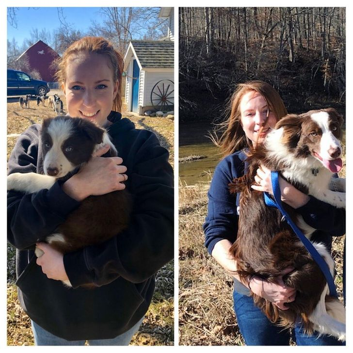 8 weeks to 11 months
