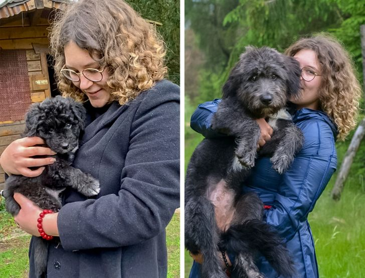 From 6 weeks to 6 months