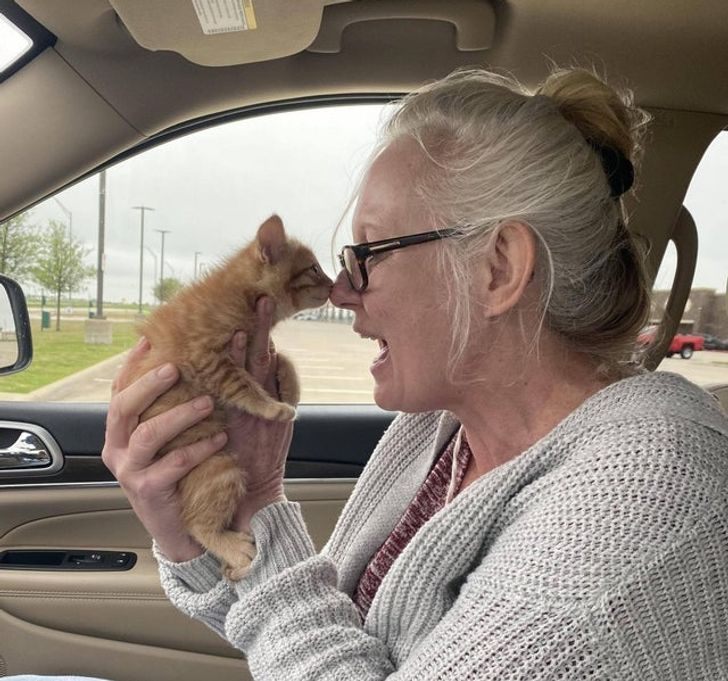 My mom meeting her dream kitten for the first time today!